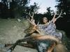 new-mexico-bull-elk-muzzleloader