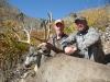 southern-utah-mule-deer